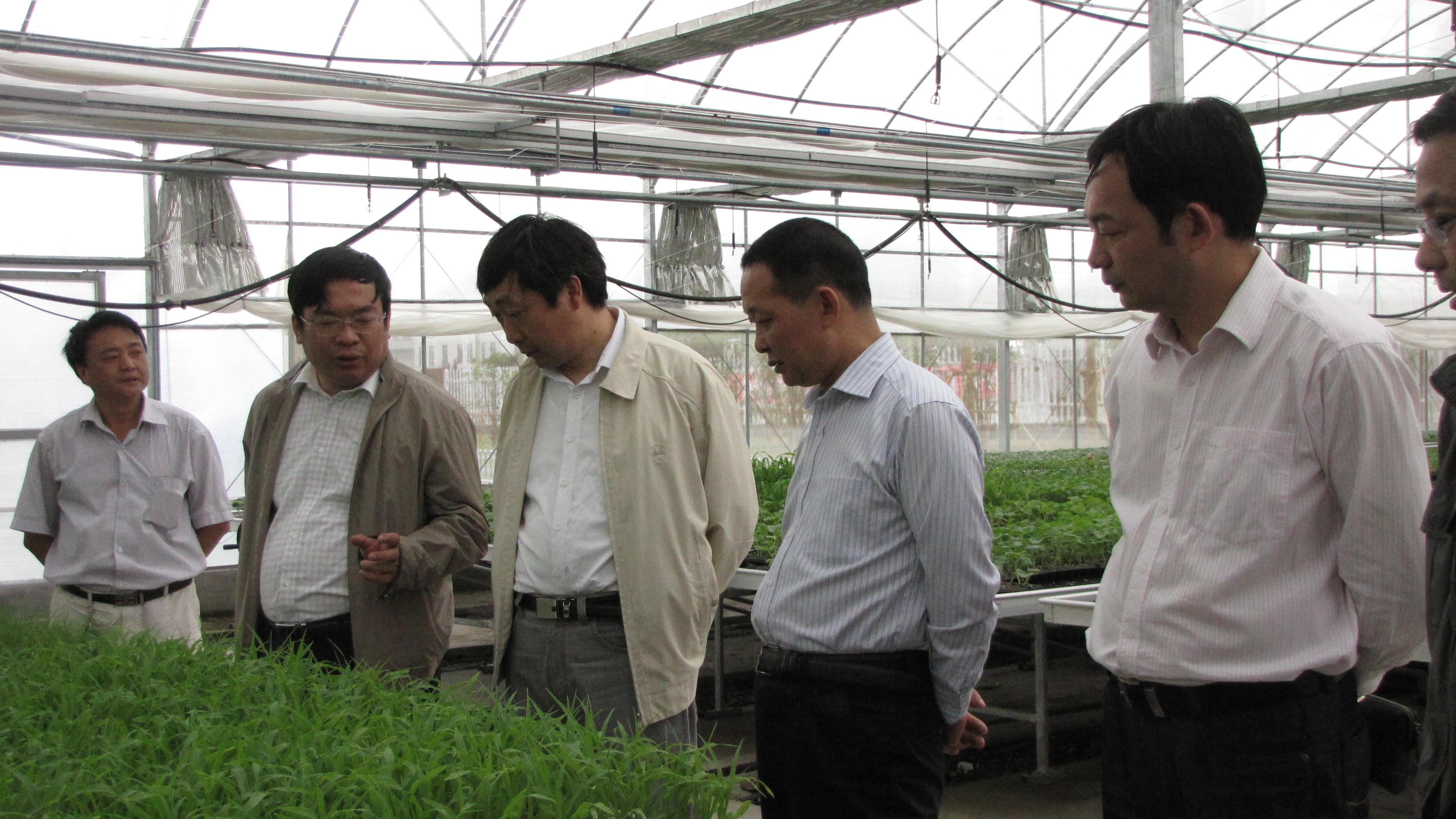 江苏海门市供销合作总社领导来司参观考察